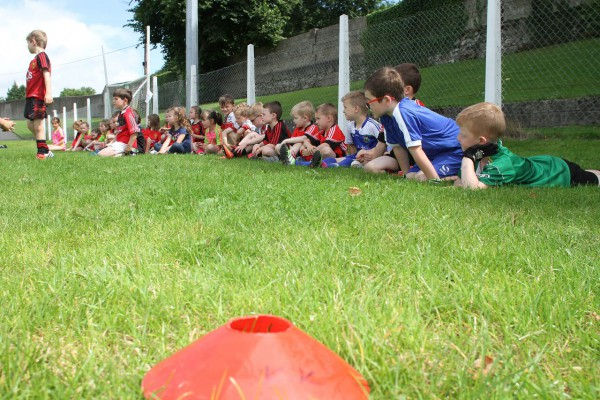 planning and preparation for the Kellogg's GAA Cúl Camps is well underway in County Down
